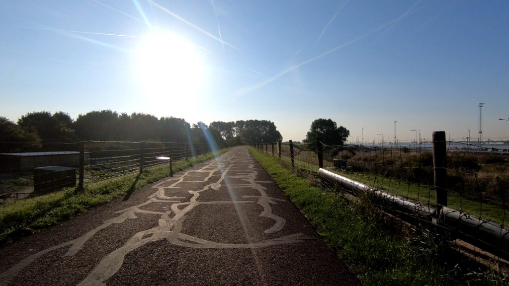 photo of cycle path in the netherlands with cracks covered by bitumen